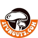 funguys logo