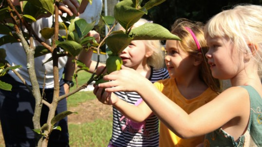 GO_FarmtoPreschool_Stills-12-580x326